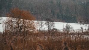 2015_02_02 1